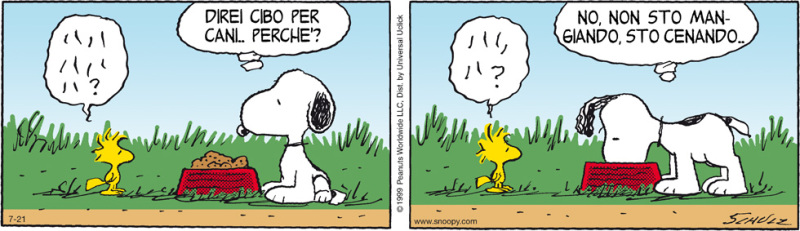 Snoopy-docet