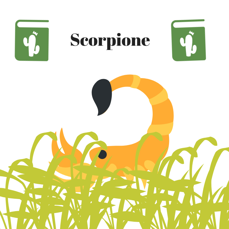 Scopione